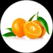 Ekstrakt z gorzkiej pomarańczy